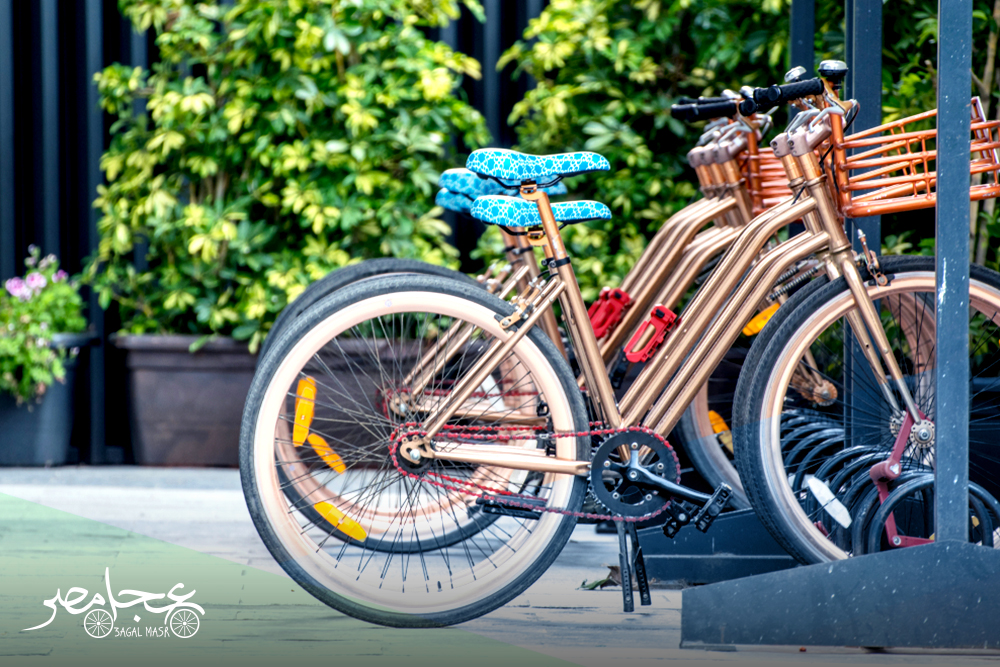 How to find the best bike shop in Egypt?